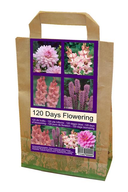 Bloemen voor 120 dagen