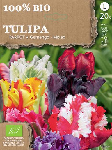Tulp Parkiet Gemengd Biologisch