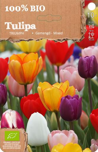 Biologische Bloembollen: Triumph Tulpen Mix