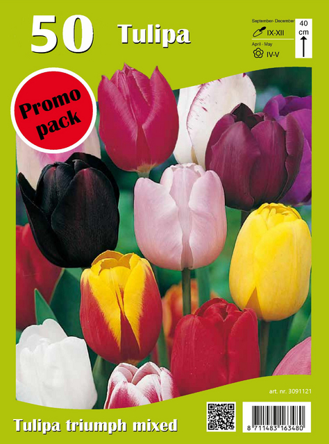 Triumph Tulpen Mix (Voordeelpakket)
