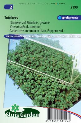 Tuinkers Gewone (Lepidium sativum)