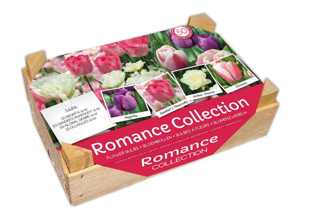 Bloembollen Kistje Romantische Collectie