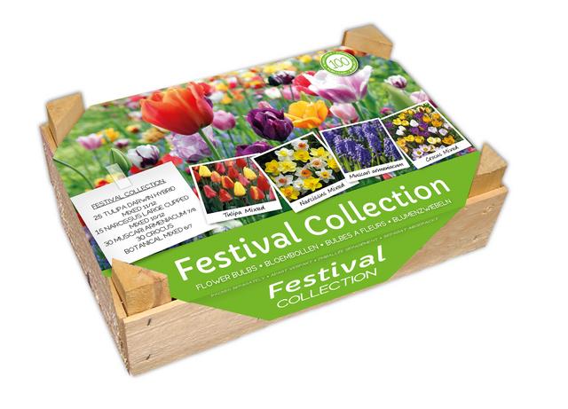 Bloembollen Kistje Festival Collectie