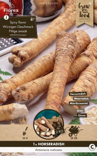 Mierikswortel (Armoracia rusticana)