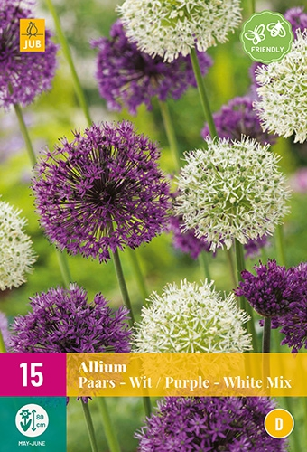 Alliums Paars & Wit Mix