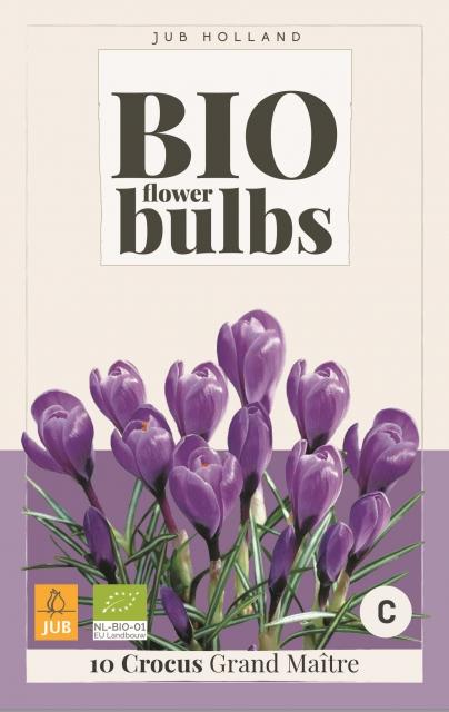 Crocus Grand Maitre - Bio Flower Bulbs