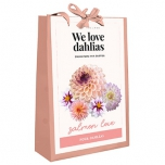 We Love Dahlias - Salmon Love